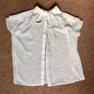 Silky Sheer Tie Bow Button Back Zara Top
